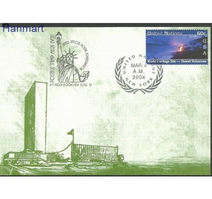 Znaczek Narody Zjednoczone Nowy Jork 2004 Mi 933 Karta Max