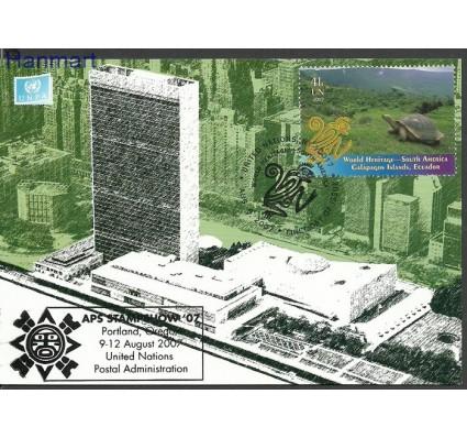Znaczek Narody Zjednoczone Nowy Jork 2007 Mi 1066 Karta Max
