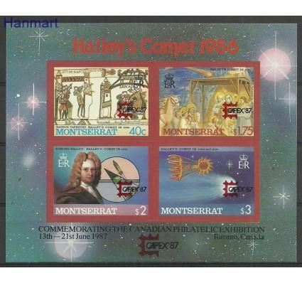 Znaczek Montserrat 1987 Mi bl44B Czyste **