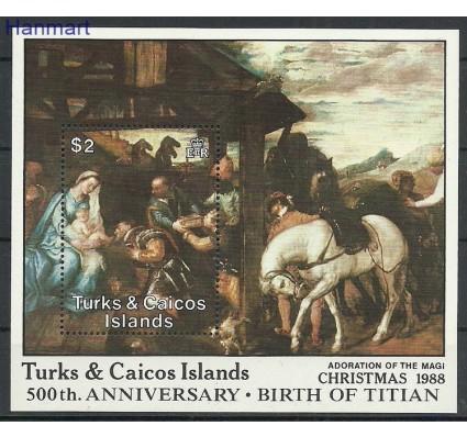 Znaczek Turks i Caicos 1988 Mi bl 74 Czyste **