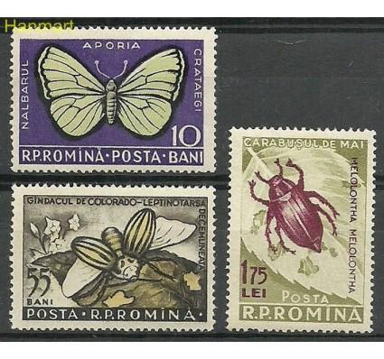 Rumunia 1956 Mi 1586-1588a Czyste **