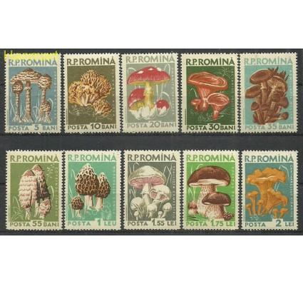 Znaczek Rumunia 1958 Mi 1721-1730 Czyste **