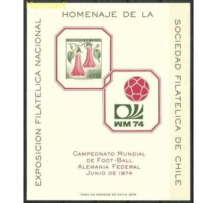 Chile 1974 Mi gedbl 701 Czyste **