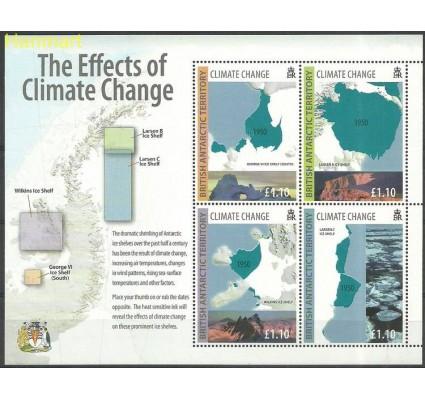 Znaczek Brytyjskie Terytorium Antarktyczne 2009 Mi bl17 Czyste **