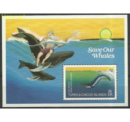 Turks i Caicos 1984 Mi bl44 Czyste **