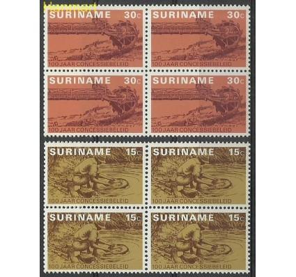 Znaczek Surinam 1975 Mi vie687-688 Czyste **