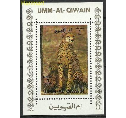 Znaczek Umm Al Qiwain 1972 Mi ein1004 Czyste **