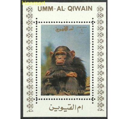 Znaczek Umm Al Qiwain 1972 Mi ein1005 Czyste **