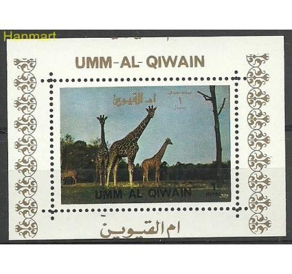 Znaczek Umm Al Qiwain 1972 Mi ein1017 Czyste **