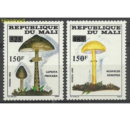 Znaczek Mali 1992 Mi 1155-1156 Czyste **