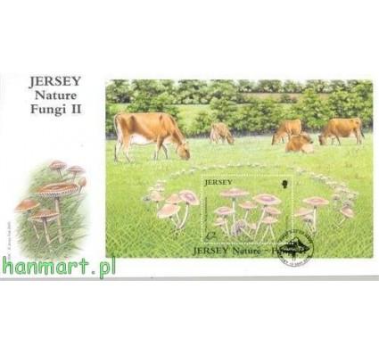 Jersey 2005 Mi bl 51 FDC