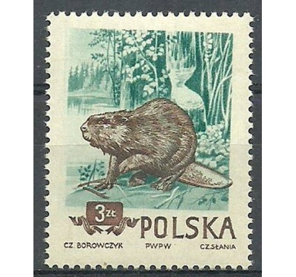 Znaczek Polska 1954 Mi 888 Fi 746B Czyste **