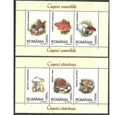 Znaczek Rumunia 2003 Mi bl 332-333 Czyste **