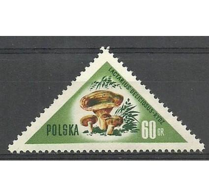 Znaczek Polska 1959 Mi 1096 Fi 951 Czyste **