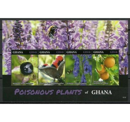 Znaczek Ghana 2016 Mi (01) Czyste **