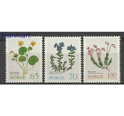 Znaczek Norwegia 1973 Mi 671-673 Czyste **