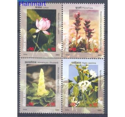 Znaczek Nepal 2003 Mi 775-778 Czyste **
