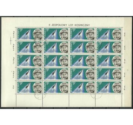 Znaczek Polska 1963 Mi ark 1416 Fi ark 1268B2 Stemplowane