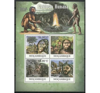 Znaczek Mozambik 2011 Mi ark 4469-4472 Czyste **