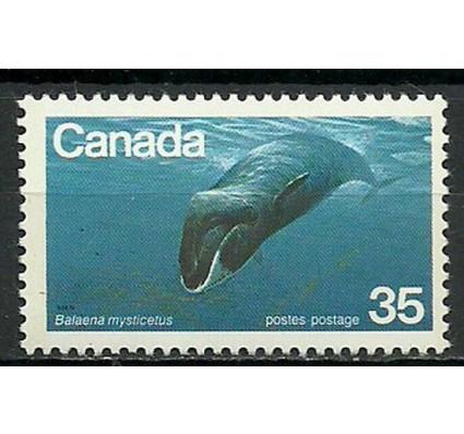 Znaczek Kanada 1979 Mi 723 Czyste **
