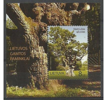 Znaczek Litwa 2010 Mi bl 40 Czyste **