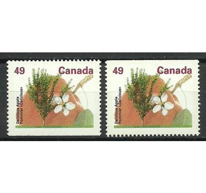 Znaczek Kanada 1992 Mi 1340H Czyste **