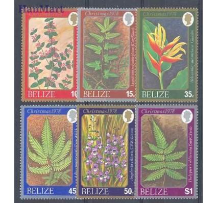 Znaczek Belize 1978 Mi 390-395 Czyste **