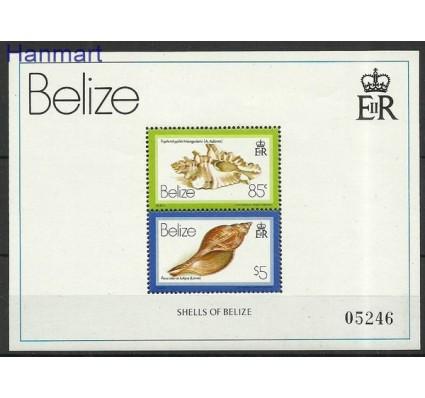 Znaczek Belize 1980 Mi bl 14 Czyste **