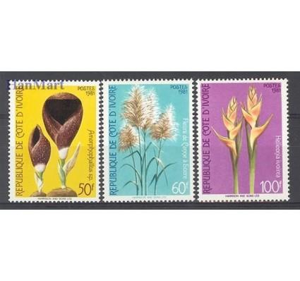 Znaczek Wybrzeże Kości Słoniowej 1981 Mi 685-687 Czyste **