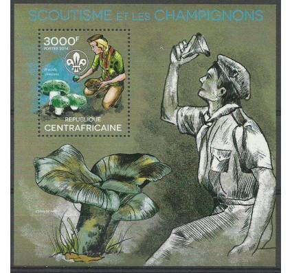 Znaczek Republika Środkowoafrykańska 2014 Mi bl 1175 Czyste **
