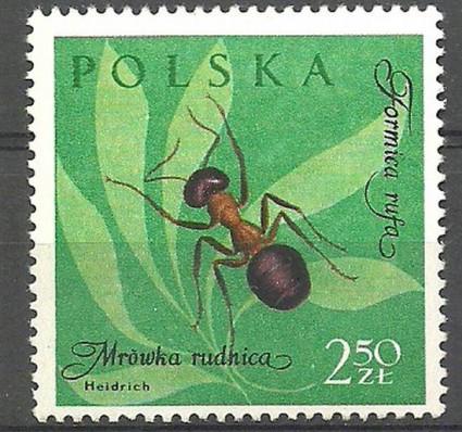 Znaczek Polska 1961 Mi 1287 Fi 1142 Czyste **