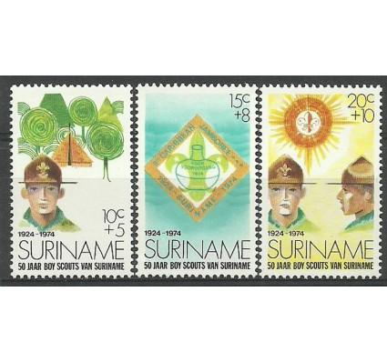 Znaczek Surinam 1974 Mi 677-679 Czyste **