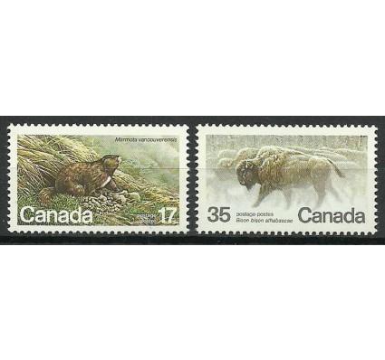 Znaczek Kanada 1981 Mi 794-795 Czyste **