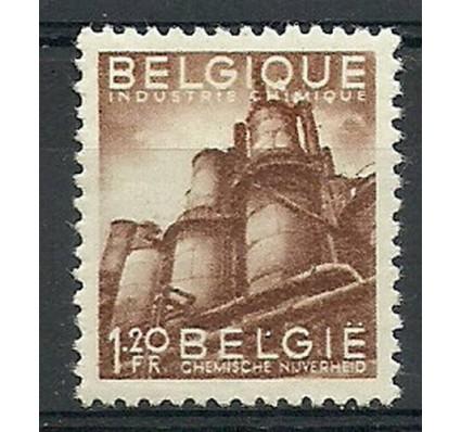 Znaczek Belgia 1948 Mi 805 Czyste **