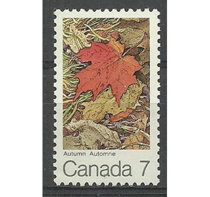 Znaczek Kanada 1971 Mi 487 Czyste **