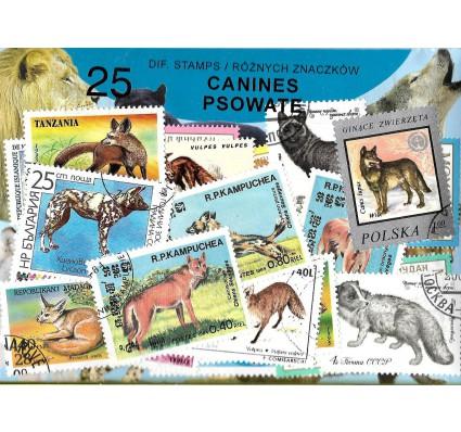 Pakiet filatelistyczny PSOWATE 25 znaczkow