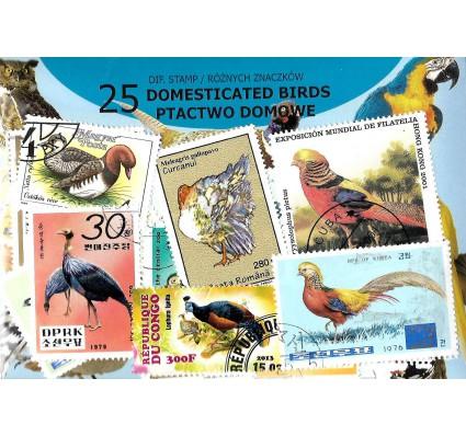 Pakiet filatelistyczny PTACTWO DOMOWE 25 znaczkow