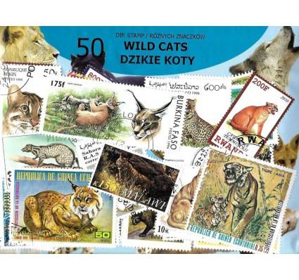 Pakiet filatelistyczny DZIKIE KOTY 50 znaczkow