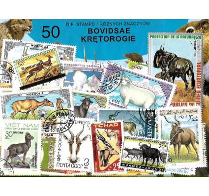 Pakiet filatelistyczny KRĘTOROGIE 50 znaczkow