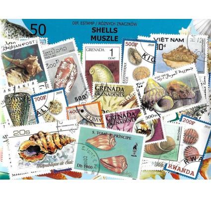 Pakiet filatelistyczny MUSZLE 50 znaczkow