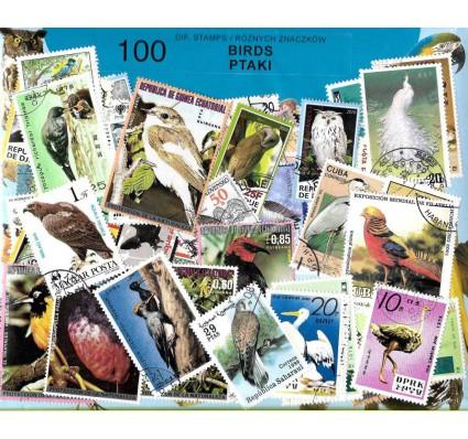 Pakiet filatelistyczny PTAKI 100 znaczkow