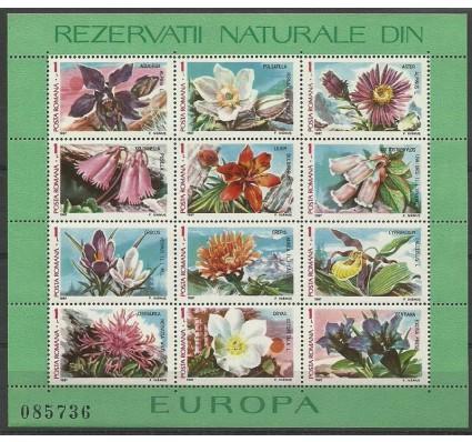 Znaczek Rumunia 1987 Mi bl 235 Czyste **