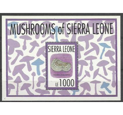 Znaczek Sierra Leone 1993 Mi bl 221 Czyste **