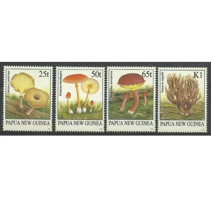 Znaczek Papua Nowa Gwinea 1995 Mi 750-753 Czyste **