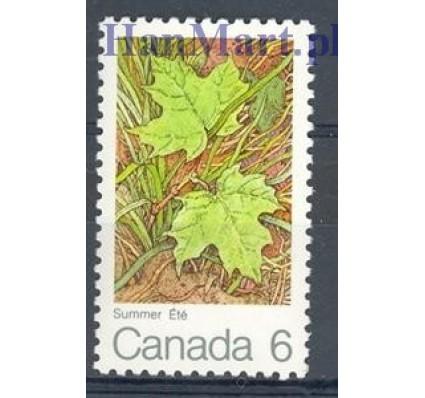 Znaczek Kanada 1971 Mi 483 Czyste **