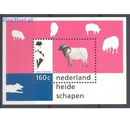Znaczek Holandia 1997 Mi bl 51 Czyste **