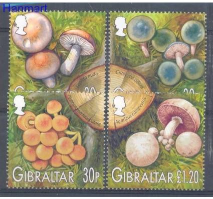 Znaczek Gibraltar 2003 Mi 1054-1057 Czyste **