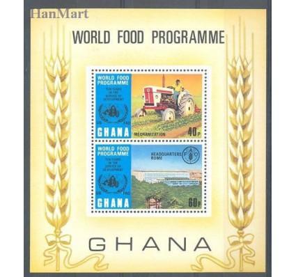Znaczek Ghana 1973 Mi bl 52 Czyste **