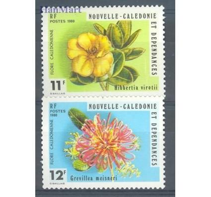 Nowa Kaledonia 1980 Mi 646-647 Czyste **