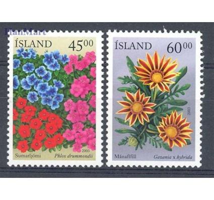 Islandia 2003 Mi 1028-1029 Czyste **